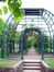 аллея в верхнем парке Петергофа